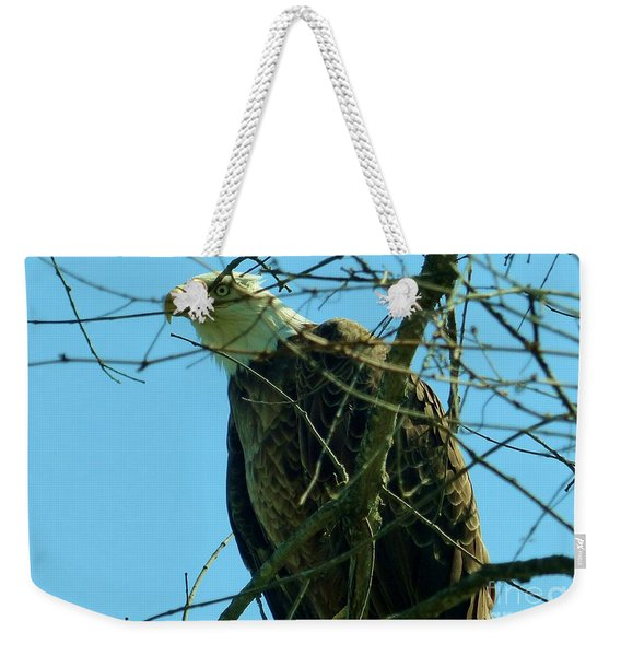 Bald Eagle Keeping Guard Weekender Tote Bag