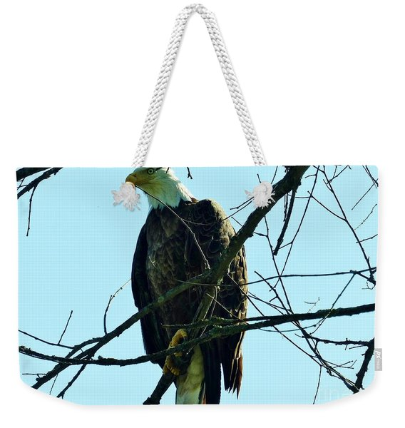 Bald Eagle Over The Root River Weekender Tote Bag