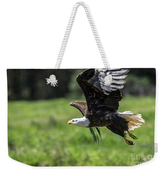 Bald Eagle-3372 Weekender Tote Bag