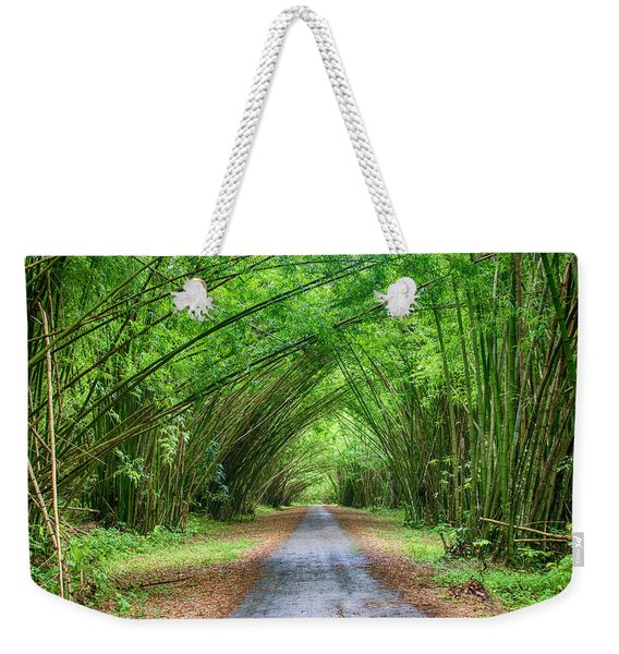 Weekender Tote Bag featuring the photograph Bamboo Cathedral Trinidad by Rachel Lee Young