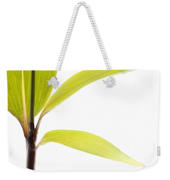 Bamboo Meditation 2 Weekender Tote Bag