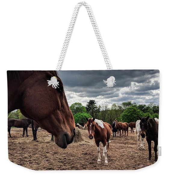 Band Of Horses Weekender Tote Bag