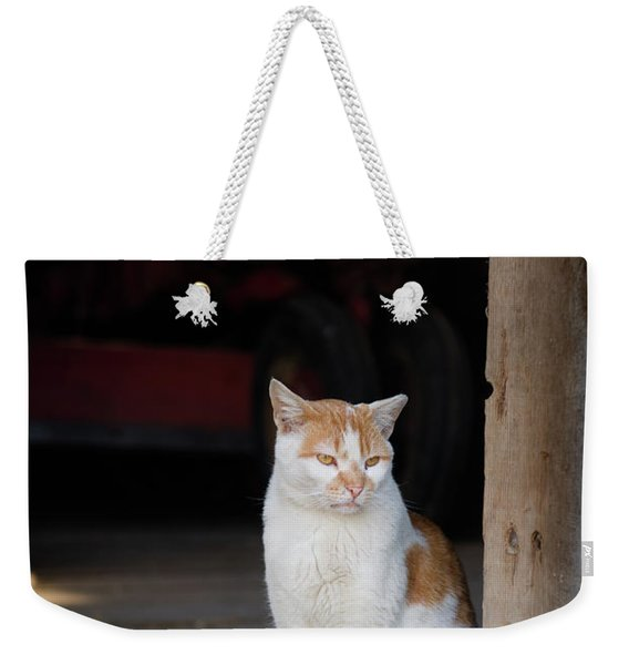 Barn Cat And Tractor Weekender Tote Bag