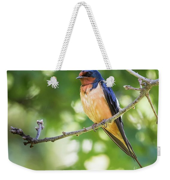 Barn Swallow  Weekender Tote Bag