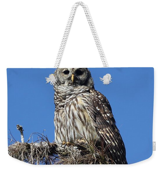 Barred Owl Portrait Weekender Tote Bag