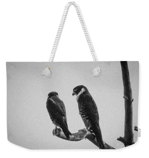Bat Falcon In Black And White Weekender Tote Bag