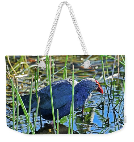 Weekender Tote Bag featuring the photograph Bath Time by Sally Sperry