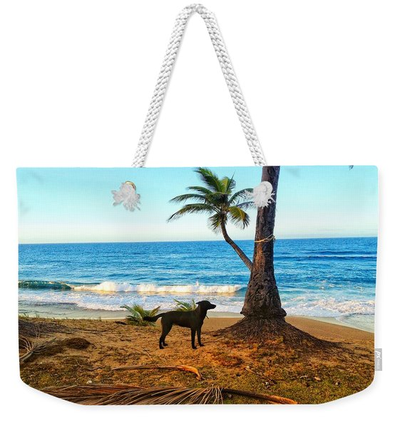 Beach Dog  Weekender Tote Bag