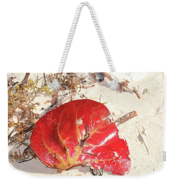 Beach Treasures 1 Weekender Tote Bag