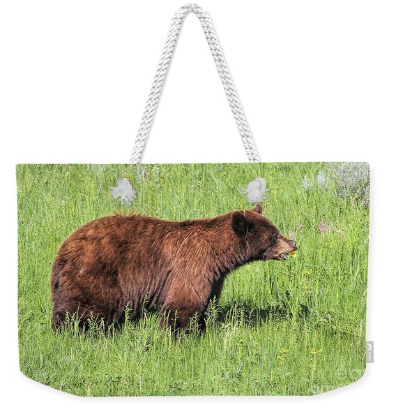 Weekender Tote Bag featuring the photograph Bear Eating Daisies by Jemmy Archer