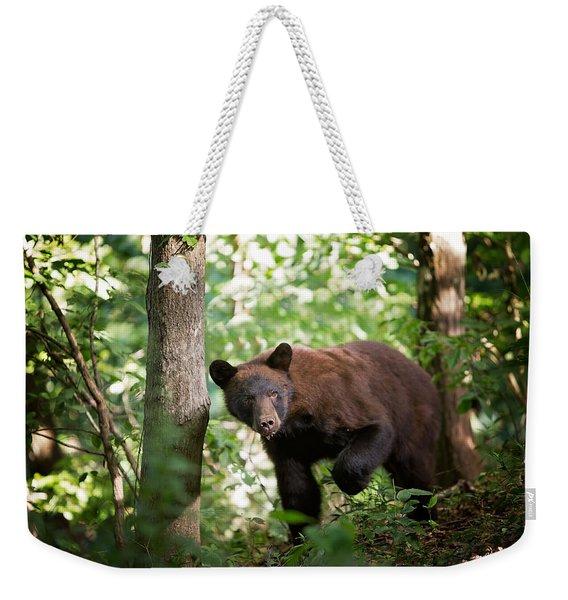 Bear In The Woods Weekender Tote Bag