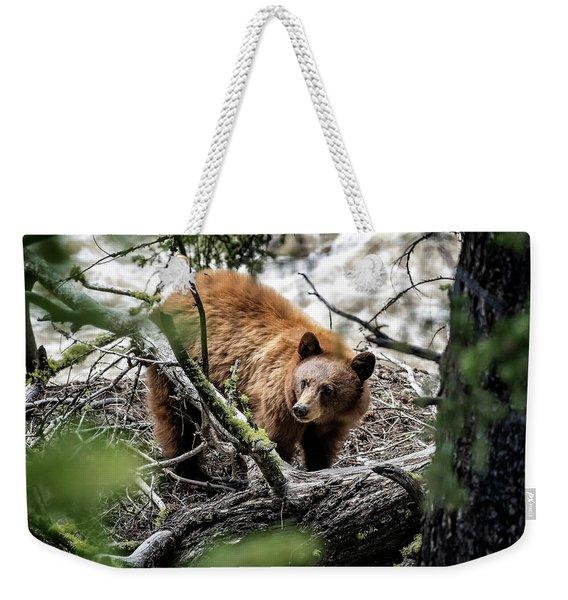 Bear In Trees Weekender Tote Bag