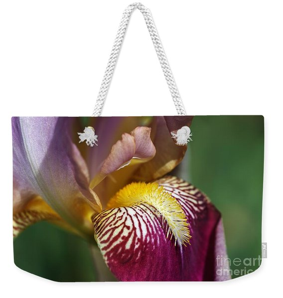 Bearded Iris Flower Mary Todd Weekender Tote Bag