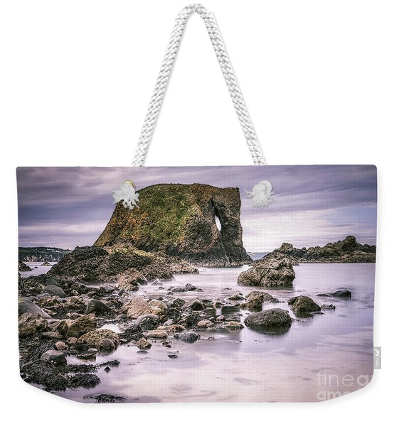 Beast Within Weekender Tote Bag