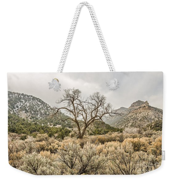 Beautiful Bare Tree Weekender Tote Bag