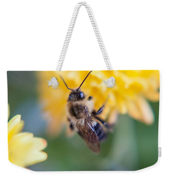 Beautiful Bee Weekender Tote Bag