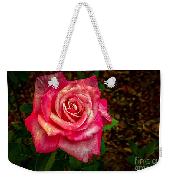 Beautiful Bicolor Rose Weekender Tote Bag