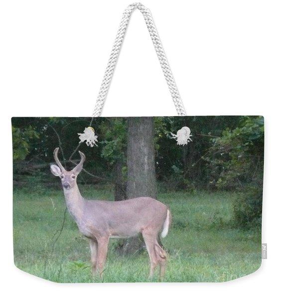 Beautiful Buck Weekender Tote Bag