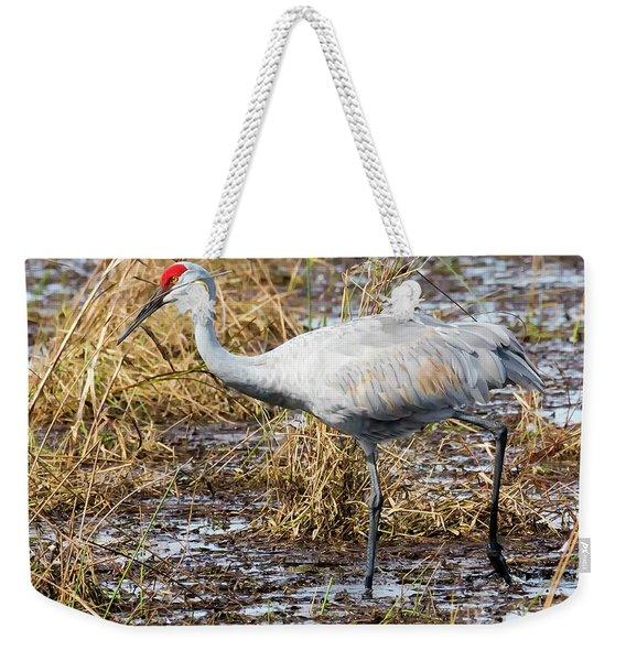 Beautiful Day For A Walk -sandhill Crane   Weekender Tote Bag