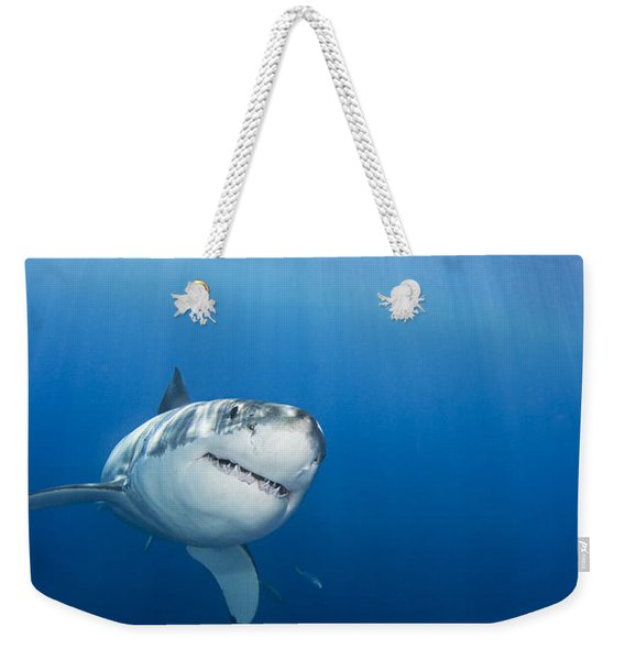 Beautiful Great White Weekender Tote Bag