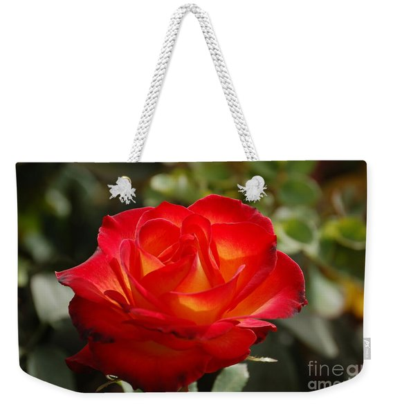 Beautiful Rose Weekender Tote Bag