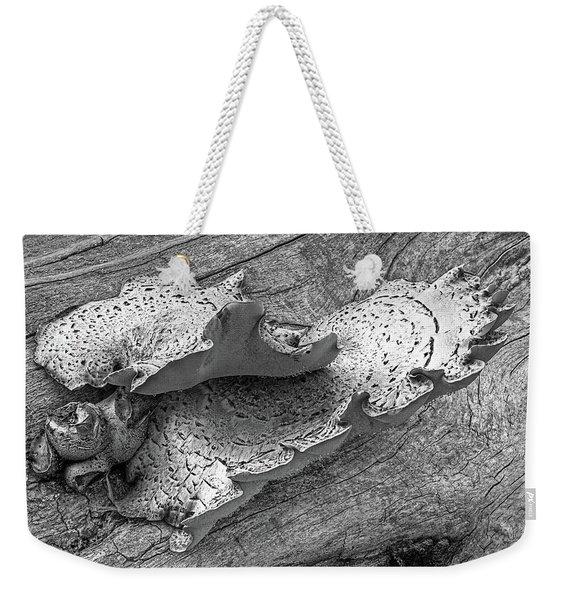 Beauty In Decay - Tree Fungus Bw Weekender Tote Bag