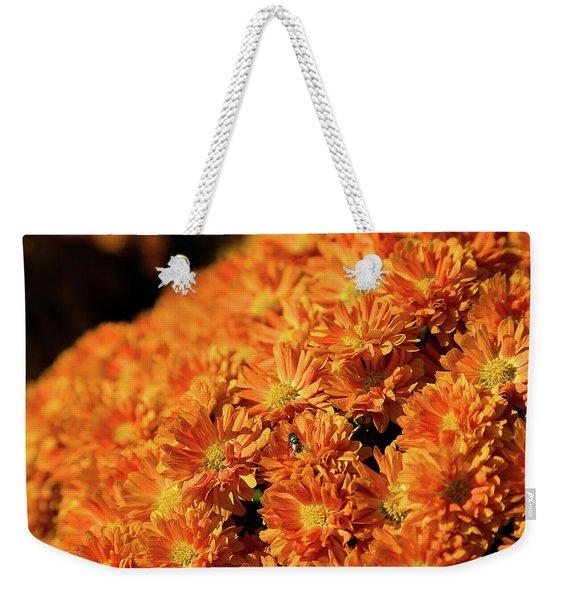 Beauty Is Everywhere Weekender Tote Bag
