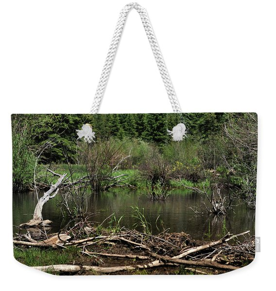 Weekender Tote Bag featuring the photograph Beaver Pond by Ron Cline
