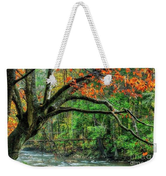 Beech Tree And Swinging Bridge Weekender Tote Bag