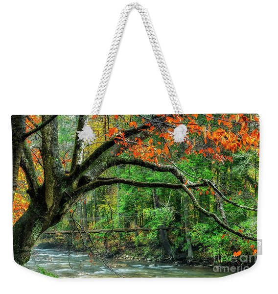 Beech Tree And Swinging Bridge Weekender Tote Bag