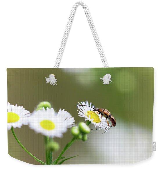 Beetle Daisy Weekender Tote Bag