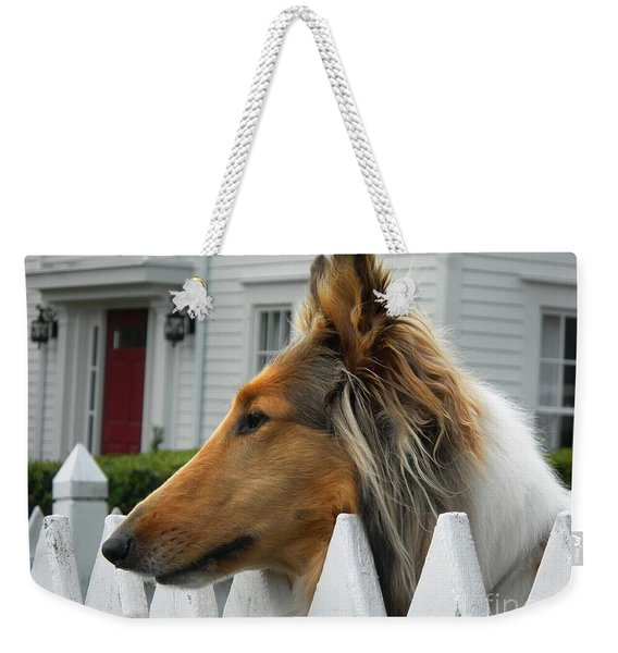 Bellingham Collie Weekender Tote Bag
