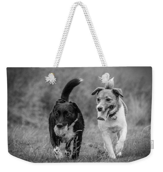 Weekender Tote Bag featuring the photograph Best Buddies by Nick Bywater