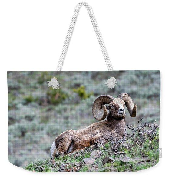 Big Horn Sheep #2 Weekender Tote Bag