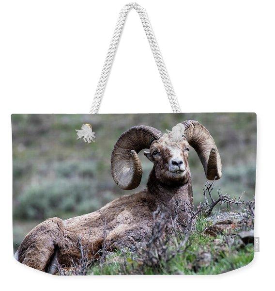 Big Horn Sheep #3 Weekender Tote Bag