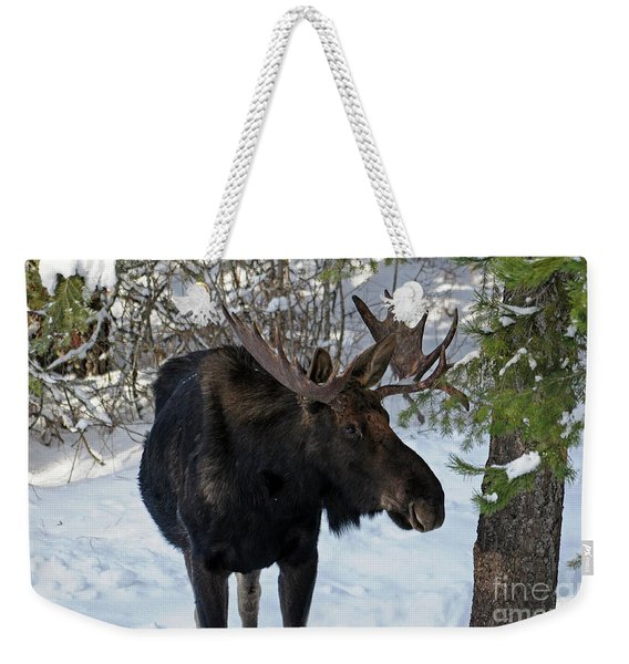 Big Moose Weekender Tote Bag