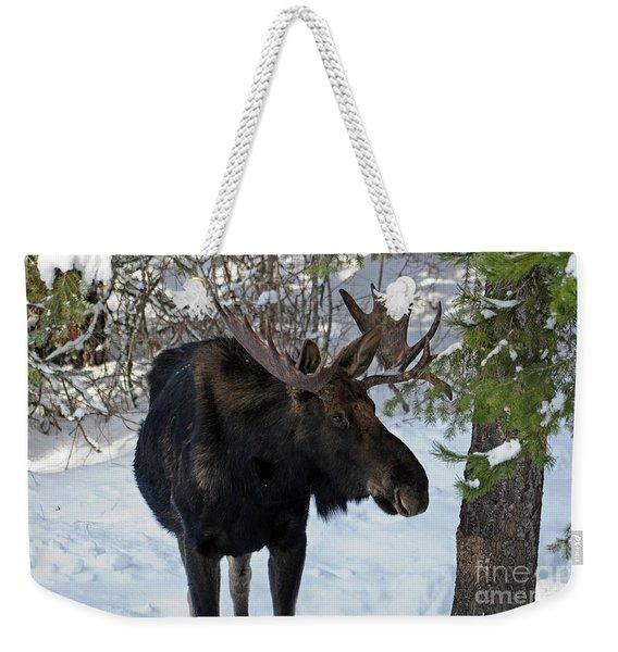 Big Moose Weekender Tote Bag