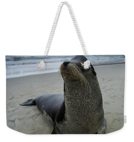 Big Seal Weekender Tote Bag