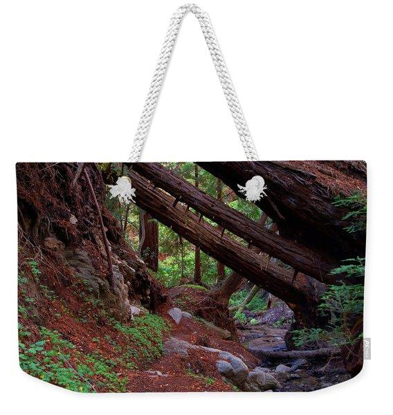Big Sur Redwood Canyon Weekender Tote Bag