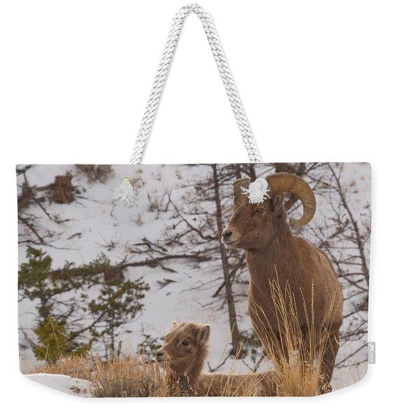 Bighorn Ram And Kid Weekender Tote Bag