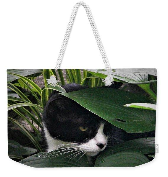 Binx Our Feral Cat Weekender Tote Bag