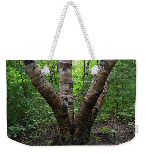 Birch Bark Tree Trunks Weekender Tote Bag