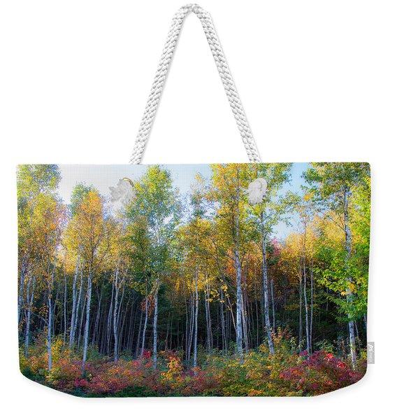Birch Trees Turn To Gold Weekender Tote Bag