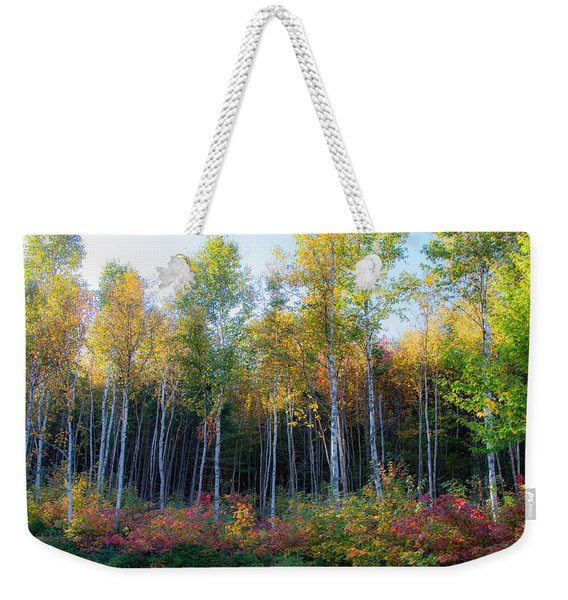 Weekender Tote Bag featuring the photograph Birch Trees Turn To Gold by Jeff Folger