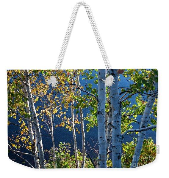 Birches On Lake Shore Weekender Tote Bag
