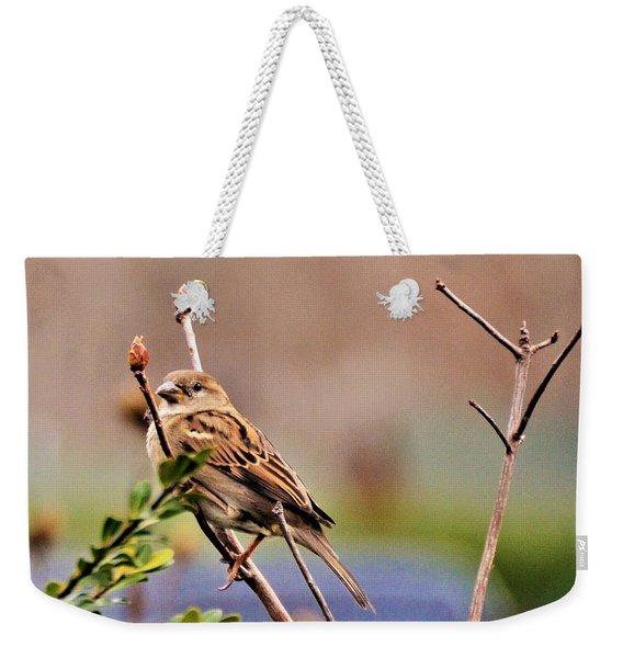 Bird In The Cold Weekender Tote Bag