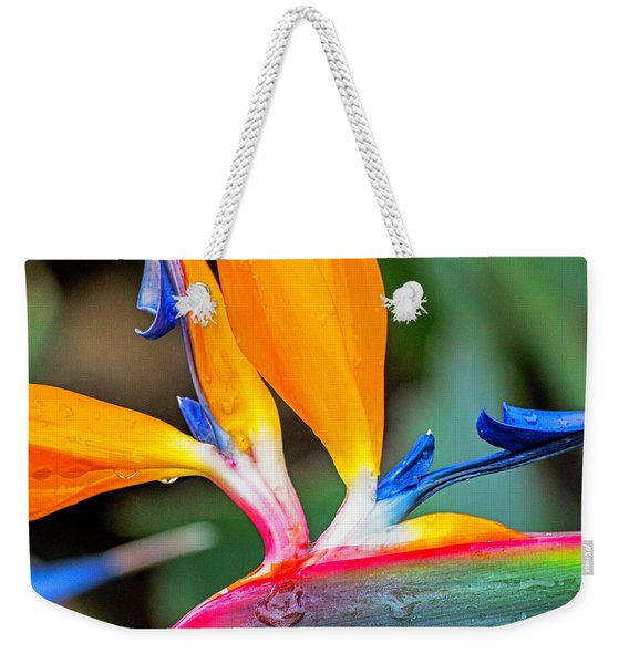 Bird Of Paradise After The Rain Weekender Tote Bag