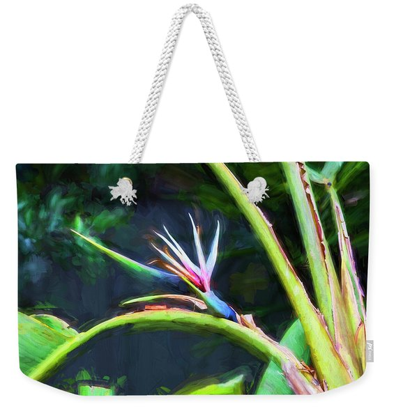 Bird Of Paradise Strelitzia Reginae 003 Weekender Tote Bag