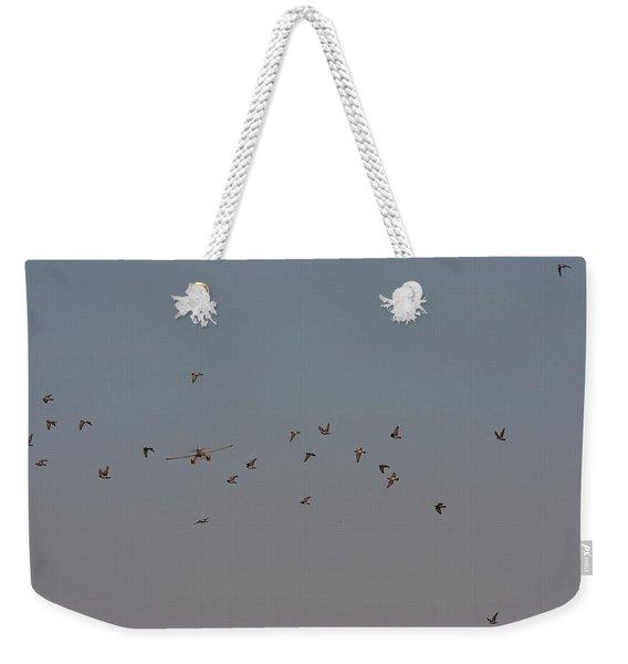 Birds And Airplane Weekender Tote Bag