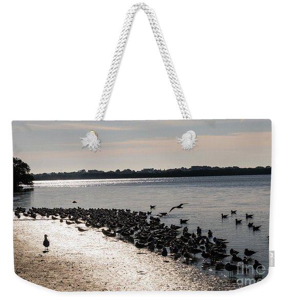 Birds At The Beach Weekender Tote Bag